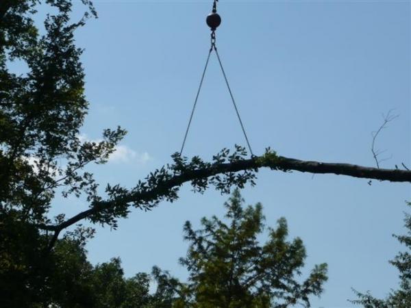 Crane-Job-8-07-038