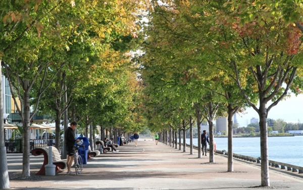 Trees-and-public-health_waterfront-promenade-829x520